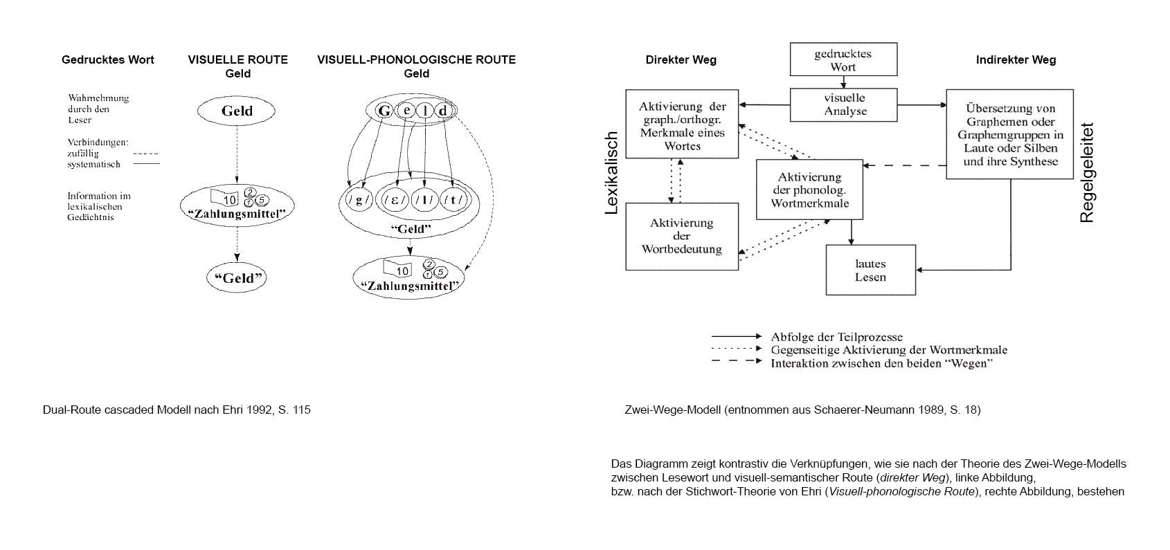 Dual-route cascaded Model oder das Zwei Wege Modell